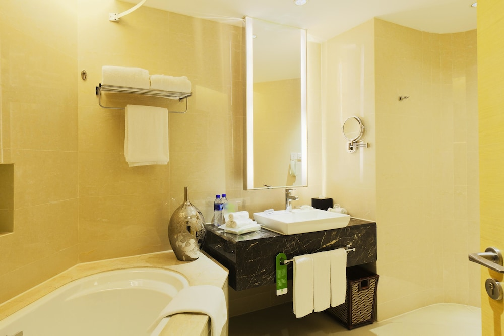 홀리데이 인 천진 아쿠아 시티(Holiday Inn Tianjin Aqua City) Hotel Image 11 - Bathroom