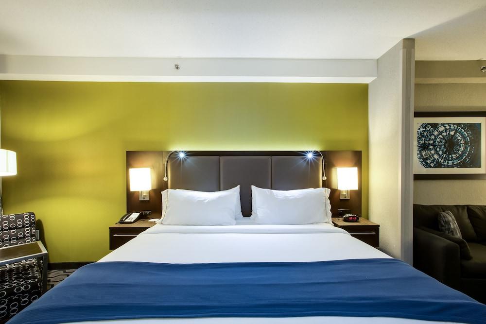 홀리데이 인 익스프레스 호텔 & 스위트 찰스턴 Arpt - Conv Ctr(Holiday Inn Express Hotel & Suites Charleston Arpt-Conv Ctr) Hotel Image 13 - Guestroom
