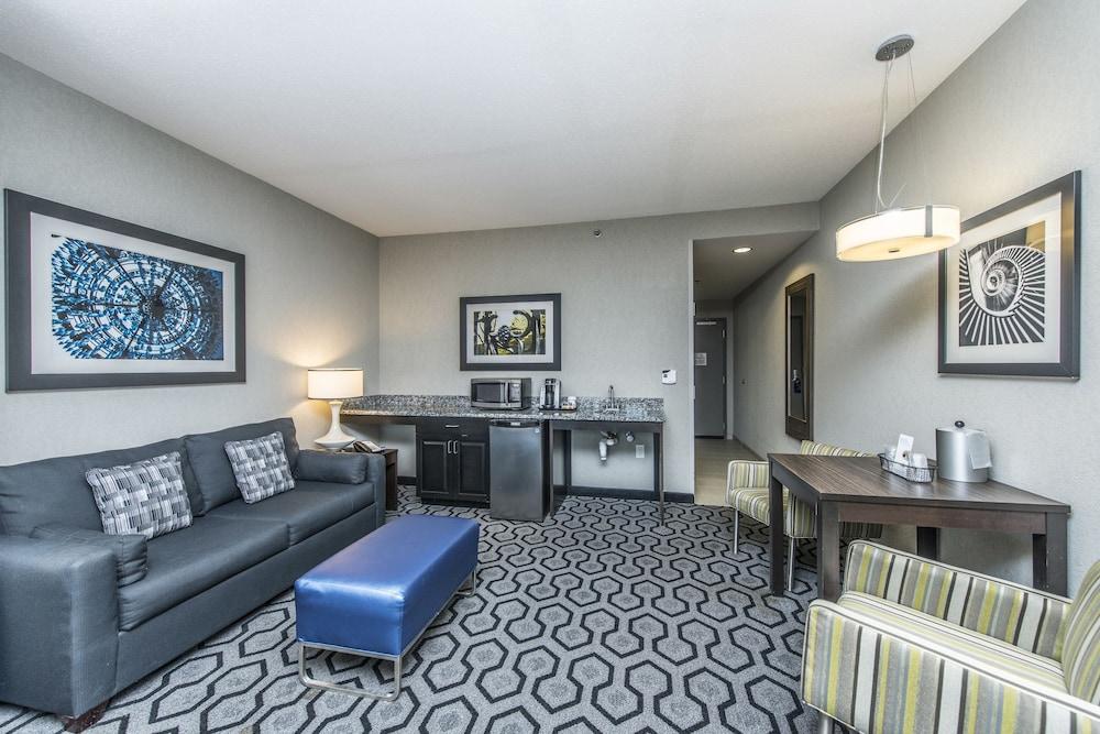 홀리데이 인 익스프레스 호텔 & 스위트 찰스턴 Arpt - Conv Ctr(Holiday Inn Express Hotel & Suites Charleston Arpt-Conv Ctr) Hotel Image 17 - Living Area