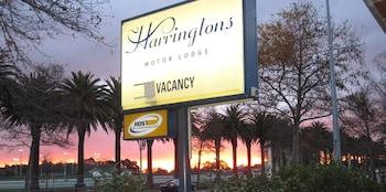 Hotel - Harringtons Motor Lodge