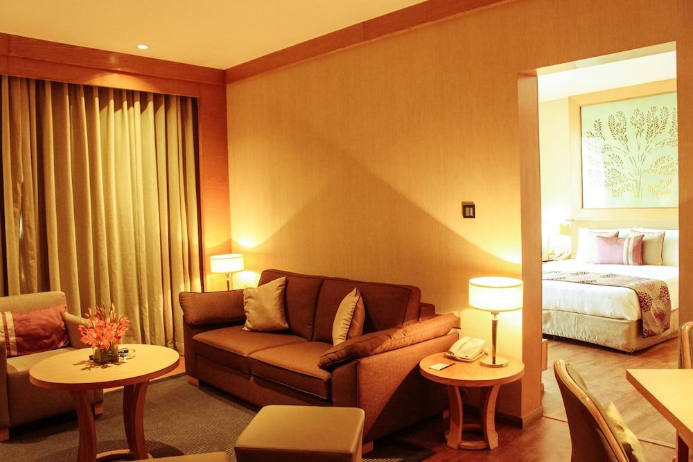 래디슨 블루 호텔 뉴 델리 드워카(Radisson Blu Hotel New Delhi Dwarka) Hotel Image 16 - Living Area