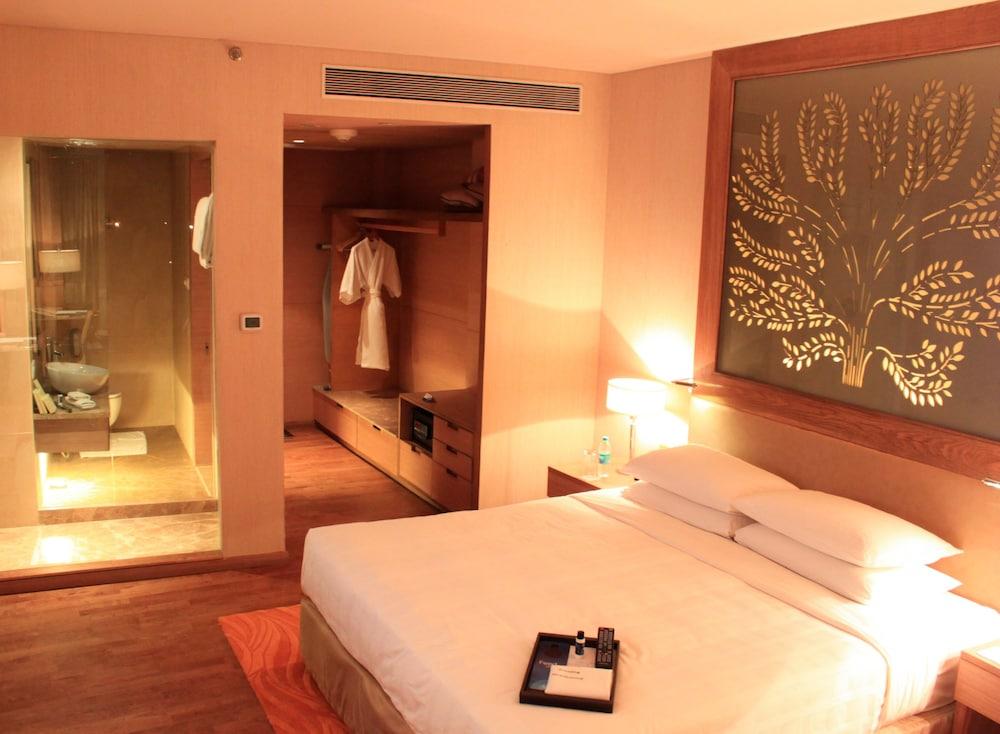 래디슨 블루 호텔 뉴 델리 드워카(Radisson Blu Hotel New Delhi Dwarka) Hotel Image 11 - Guestroom