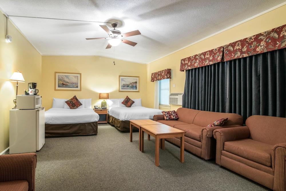 이코노 로지 인 & 스위트(Econo Lodge Inn & Suites) Hotel Image 30 - Guestroom