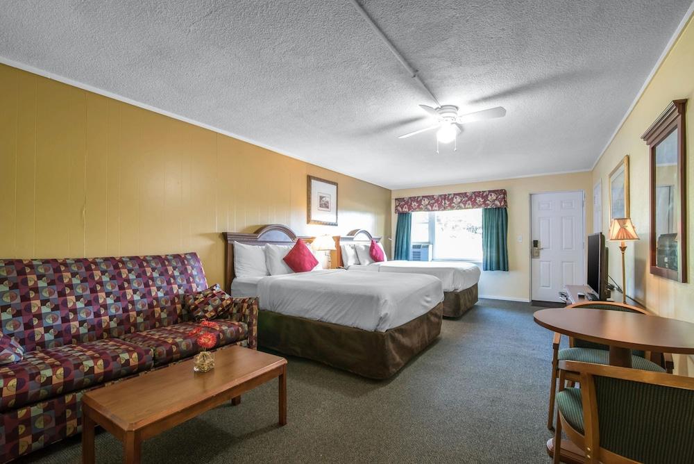 이코노 로지 인 & 스위트(Econo Lodge Inn & Suites) Hotel Image 31 - Guestroom