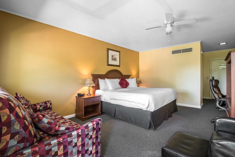 이코노 로지 인 & 스위트(Econo Lodge Inn & Suites) Hotel Image 8 - Guestroom