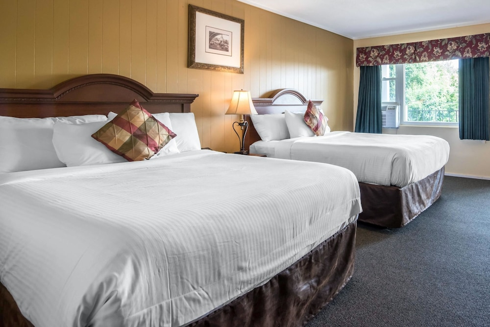 이코노 로지 인 & 스위트(Econo Lodge Inn & Suites) Hotel Image 9 - Guestroom