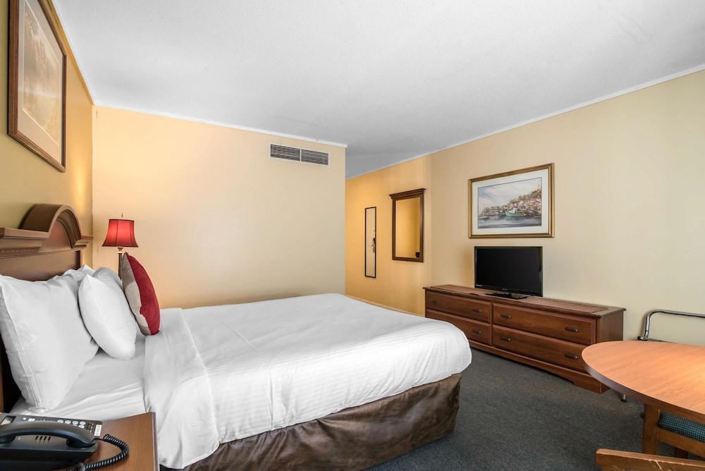 이코노 로지 인 & 스위트(Econo Lodge Inn & Suites) Hotel Image 10 - Guestroom