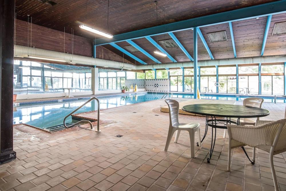 이코노 로지 인 & 스위트(Econo Lodge Inn & Suites) Hotel Image 5 - Pool