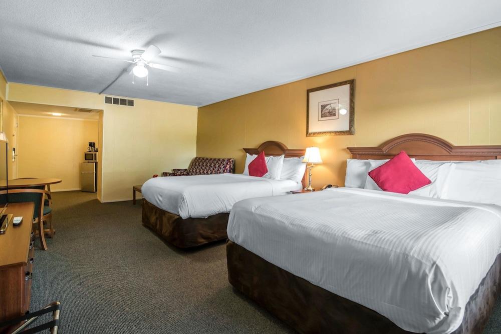 이코노 로지 인 & 스위트(Econo Lodge Inn & Suites) Hotel Image 13 - Guestroom