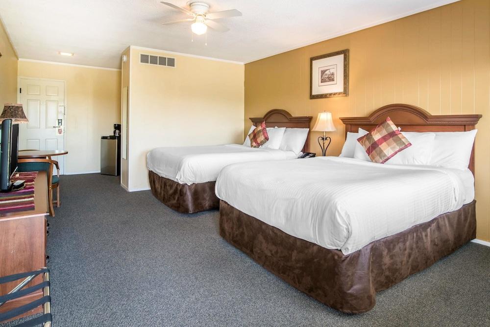 이코노 로지 인 & 스위트(Econo Lodge Inn & Suites) Hotel Image 14 - Guestroom