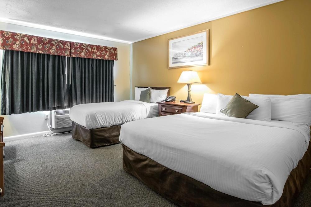 이코노 로지 인 & 스위트(Econo Lodge Inn & Suites) Hotel Image 19 - Guestroom