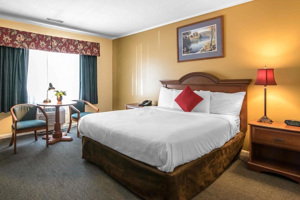 이코노 로지 인 & 스위트(Econo Lodge Inn & Suites) Hotel Image 21 - Guestroom