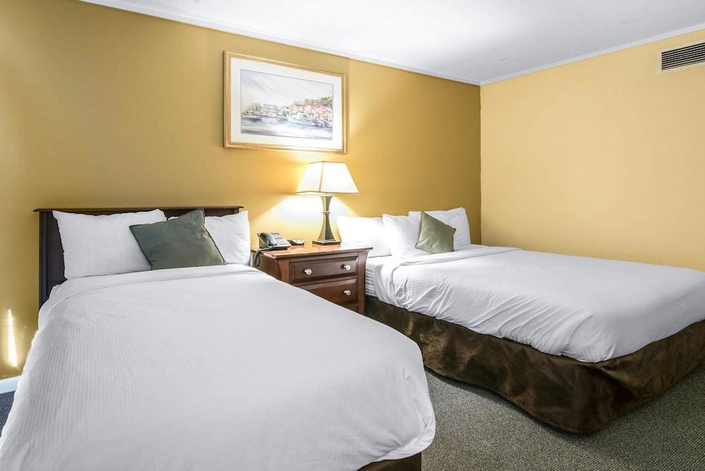 이코노 로지 인 & 스위트(Econo Lodge Inn & Suites) Hotel Image 22 - Guestroom