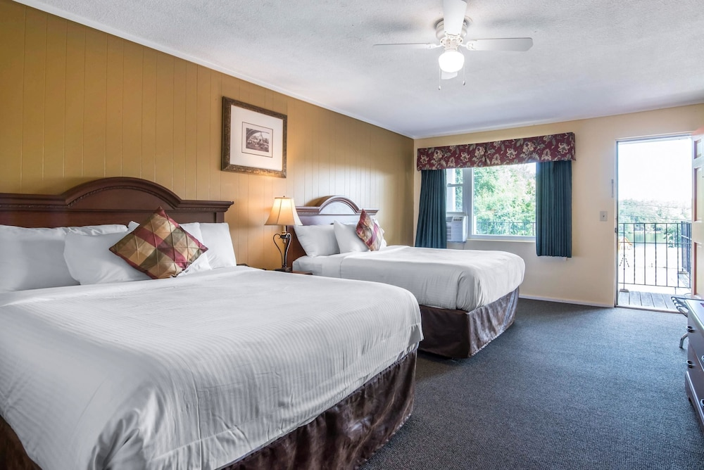이코노 로지 인 & 스위트(Econo Lodge Inn & Suites) Hotel Image 26 - Guestroom