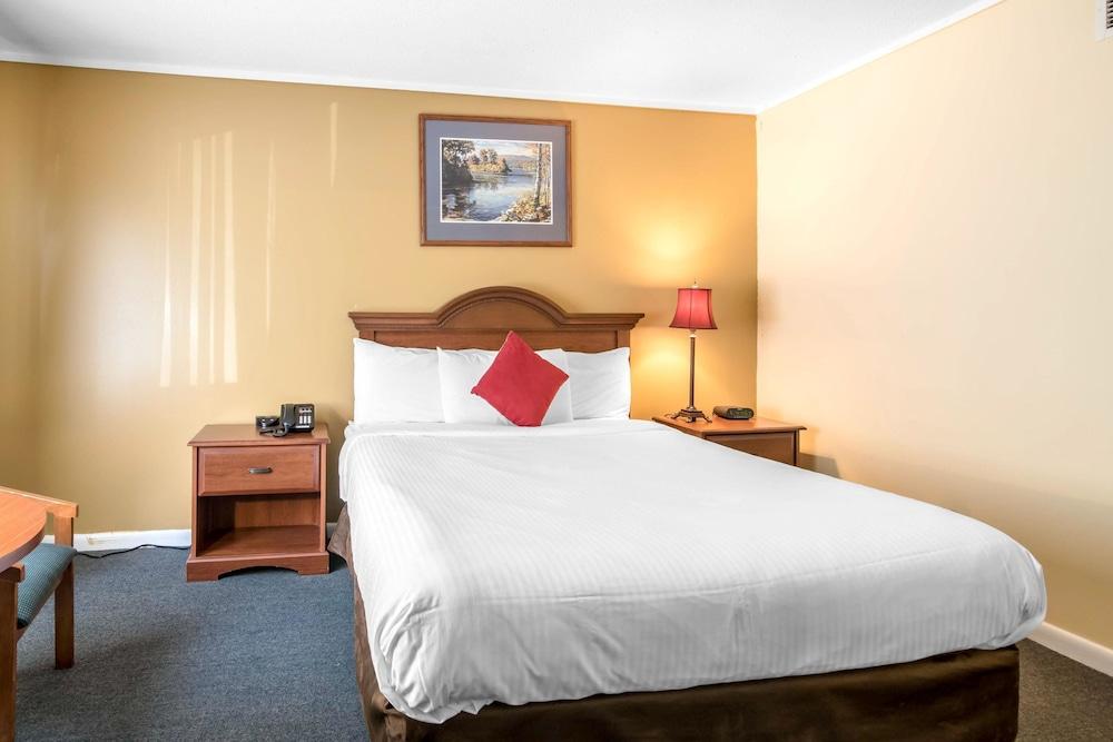 이코노 로지 인 & 스위트(Econo Lodge Inn & Suites) Hotel Image 28 - Guestroom
