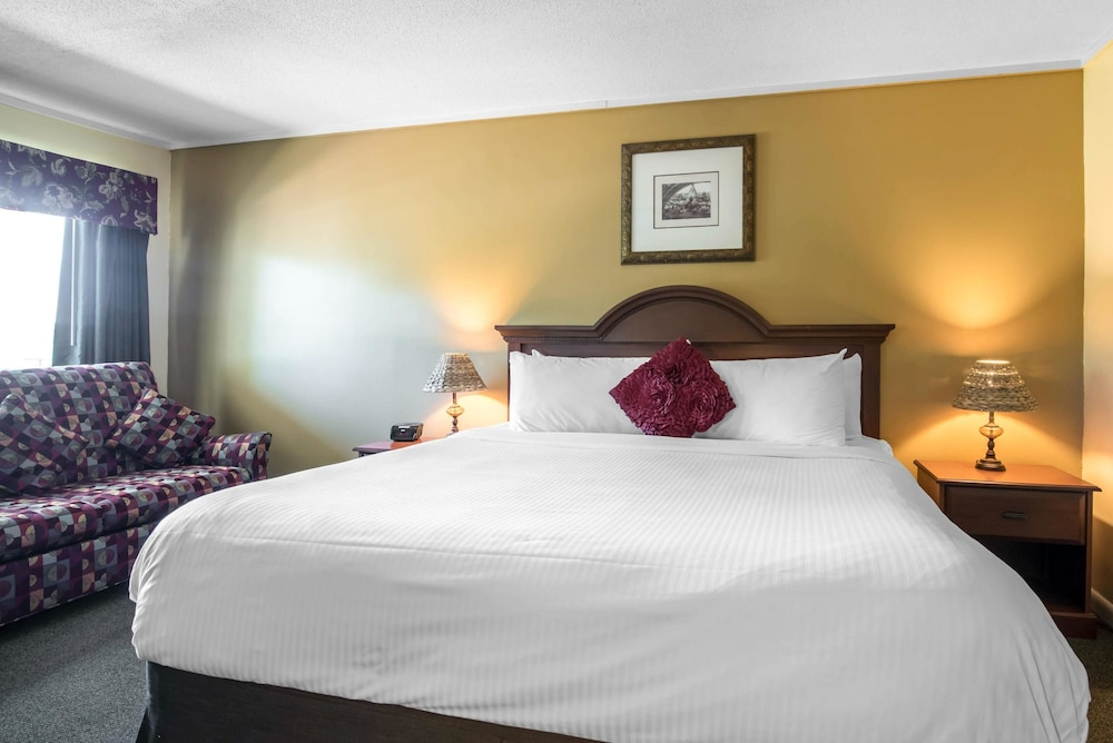이코노 로지 인 & 스위트(Econo Lodge Inn & Suites) Hotel Image 29 - Guestroom