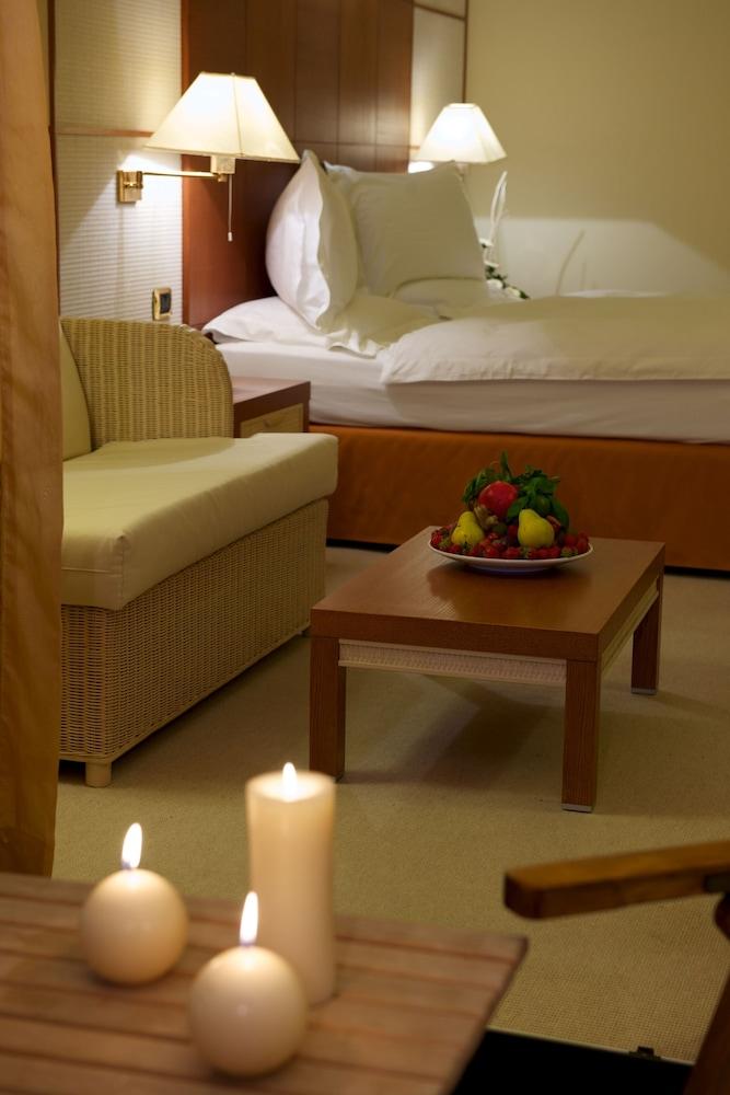파크 호텔 임페리얼 센트로 타오 내추럴 메디컬 스파(Park Hotel Imperial Centro Tao Natural Medical Spa) Hotel Image 29 - Living Area