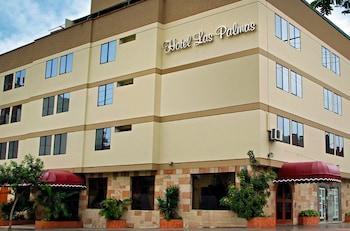 Hotel - Hotel Las Palmas