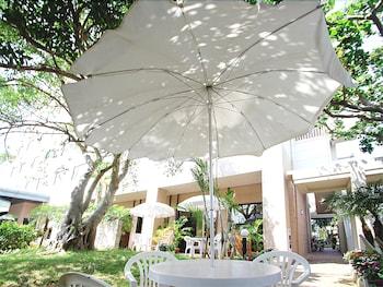 루트-인 그란티아 이시가키(Route-Inn Grantia Ishigaki) Hotel Image 4 - Terrace/Patio