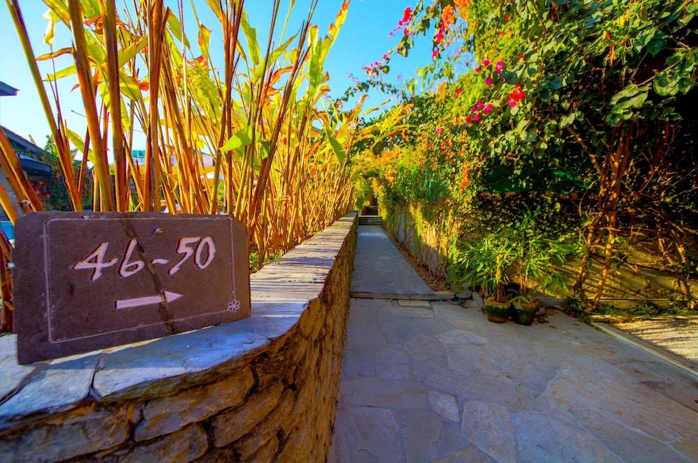 템플 트리 리조트 & 스파(Temple Tree Resort & SPA) Hotel Image 49 - Garden