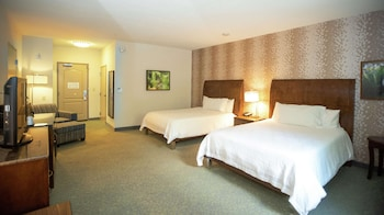 Room, 2 Queen Beds, Accessible (Roll-In Shower)