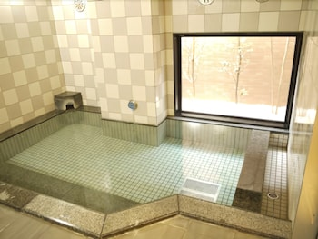 호텔 루트-인 후지에다 에키키타(Hotel Route-Inn Fujieda Ekikita) Hotel Image 12 - Indoor Pool