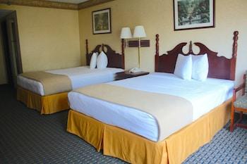 Living Room at Katerina Hotel in Orlando