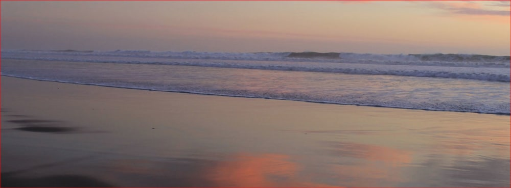 도리만스 오션프런트 인(Dorymans Oceanfront Inn) Hotel Image 29 - Beach