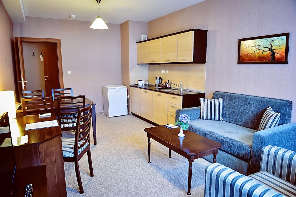 레그눔 반스코 호텔 & 스파(Regnum Bansko Hotel & Spa) Hotel Image 33 - Living Area