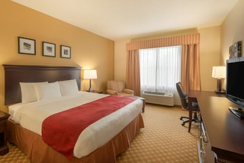 Room, 1 King Bed, Non Smoking (Pet Friendly)