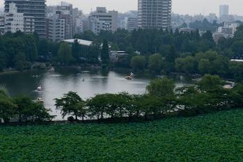 HOTEL COCO GRAND UENO SHINOBAZU View from Property