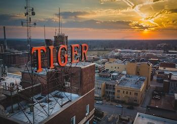 泰格飯店 The Tiger Hotel