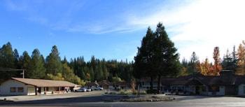 Pioneer Inn & Suites photo