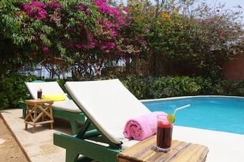 Keur Marrakis - Outdoor Pool  - #0