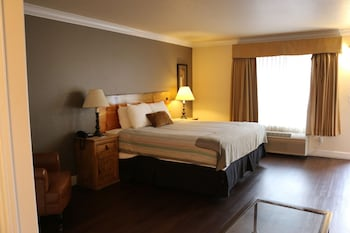 Deluxe Room, 1 King Bed with Sofa bed (No Pets )