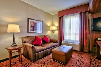 Suite, 1 King Bed, Refrigerator & Microwave, Mountain View