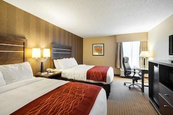 Hotel - Comfort Inn & Suites Edgewood - Aberdeen
