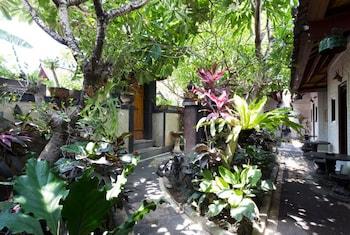 Hotel - Danas Canggu Guesthouse