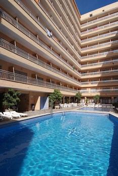 Hotel - Hotel Piñero Bahia de Palma