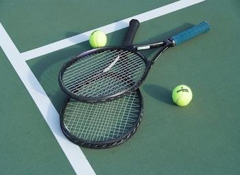 テニス コート