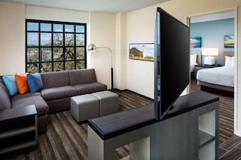Suite, 1 Bedroom (Specialty)