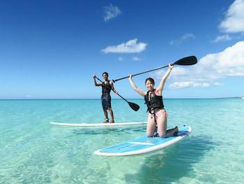 サーフィン / ボディボード