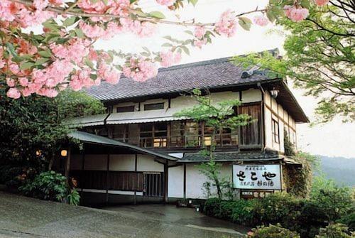 . Sakoya -Yoshino-