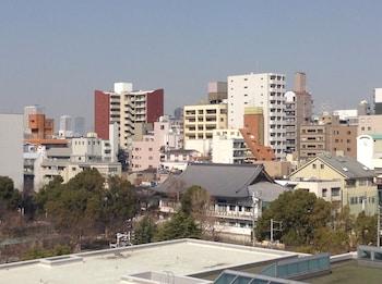 HOTEL INTERNATIONAL HOUSE OSAKA City View