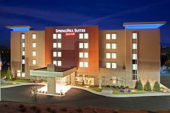 Hotel - SpringHill Suites Chattanooga Downtown/Cameron Harbor