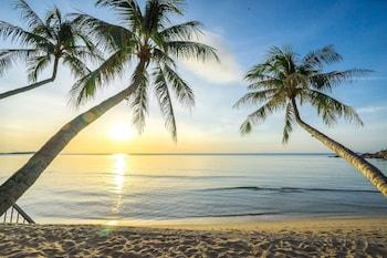 Hotel - Samui Paradise Chaweng Beach Resort & Spa