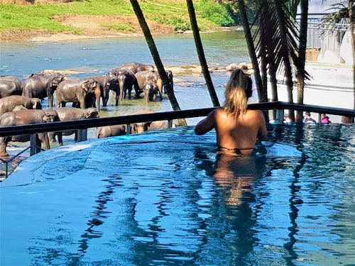 . Hotel Elephant Park