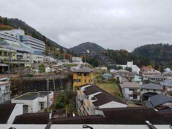 ARIMA HOT SPRING RYOKAN HANAMUSUBI View from Room