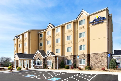 . Microtel Inn & Suites by Wyndham Shelbyville