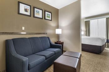 韋科北 - 近大學區凱富套房飯店 Comfort Suites Waco North - Near University Area